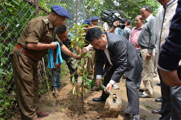 Honourable Minister (Forests) Shri T W Lepcha planting Rhododendron sapling