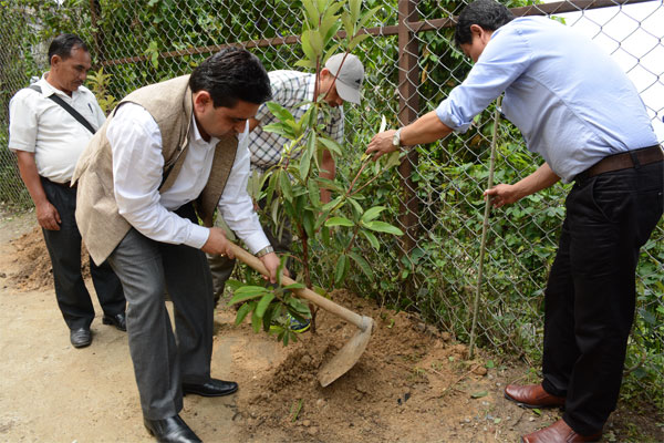 Honourable Minister (Health) Shri A K Ghatani planting Rhododendron sapling