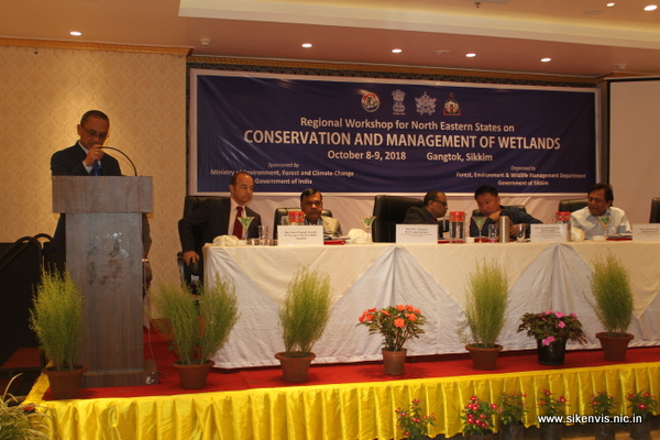 Wetlands Regional Workshop