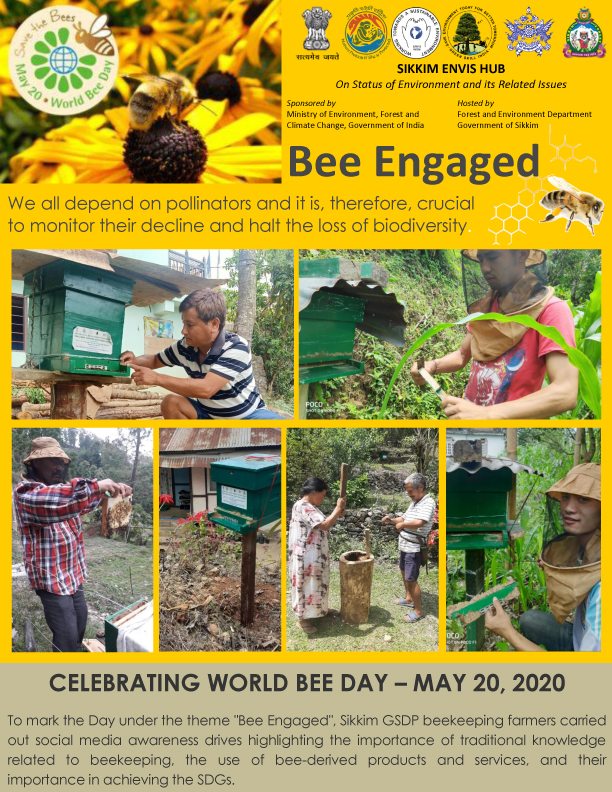 world bee day may 20, 2020