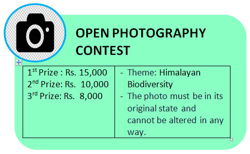 open photography contest